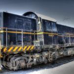 Senior-Train-Trip-11