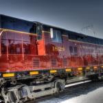 Senior-Train-Trip-12