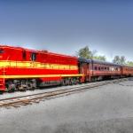 Senior-Train-Trip-5